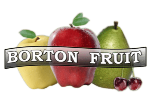 borton fruit